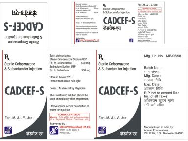 CADCEF(TM) - S - Daksh Pharmaceuticals Private Limited